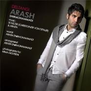 آرش شیرمحمدی - دلتنگی
