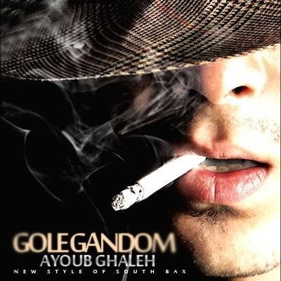 Ayub GhalEh - Gol E Gandom