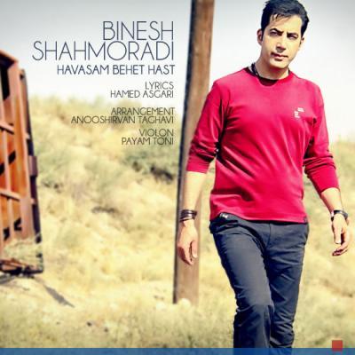 Binesh Shahmoradi - Havasam Behet Hast