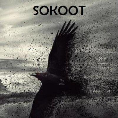 Black Crow - Sokoot