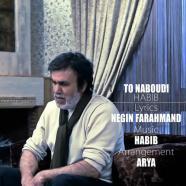 حبیب - تو نبودی