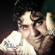 محمد مرادی - نمیبخشم تورو