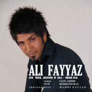 علی فیاض - احساس اول