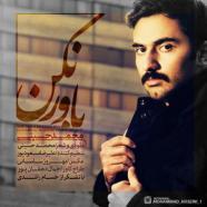 محمد حسینی - باور نکن