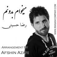 رضا حسینی - میخوام بدونم