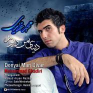 محمد غدیری - دنیای من دیوار