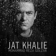 محمدرضا گلزار - جات خالیه