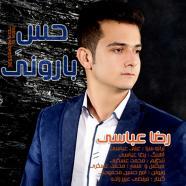 رضا عباسی - حس بارونی