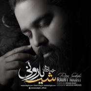 Reza Sadeghi شب بارونی