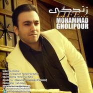 محمد قلی پور - زندگی