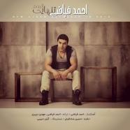 احمد فیاضی - تنهایی