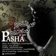 پاشا - خواننده خیابونی