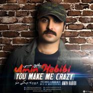 امین حبیبی - دیوونه میکنی منو