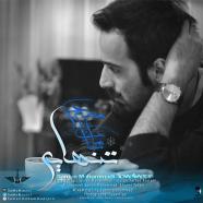 سامان محمدی - تنهایی