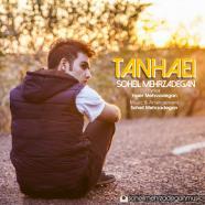 سهیل مهرزادگان - تنهایی