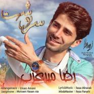 رضا میرعرب - سرنوشت
