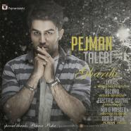 پژمان طالبی - غریبی