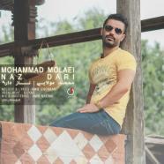 محمد مولایی - ناز داری