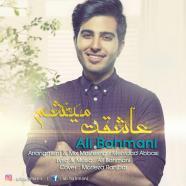 علی بهمنی - عاشقت میشم