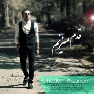 محمد نوروزی - قدم میزنم