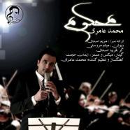 محمد عامری - محکوم
