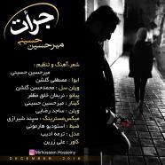 میرحسین حسینی - جرأت