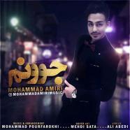 محمد امیری - جونم