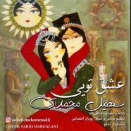 سهیل محمدی - عشق تویی