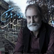 سهیل محمدی - ببار بارون