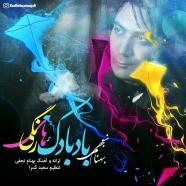 بهنام نجفی - بادبادک های رنگی