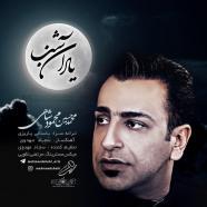 محمود شاهی - یاد آن شب