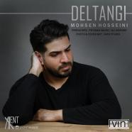 محسن حسینی - دلتنگی