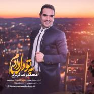 محمدرضا قربانی - به تو دل دادم