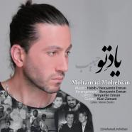 محمد محبیان - یاد تو