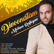 محسن رفیعیان - دیوونتم