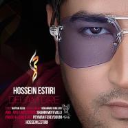 حسین استیری - دلم گیره