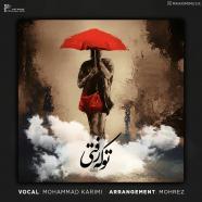 محمد کریمی - تو که رفتی