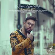 محمد لطفی - شنیدی میگن عشق
