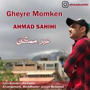 احمد صحیحی - غیر ممکن