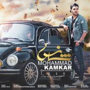 محمد کامکار - شانس