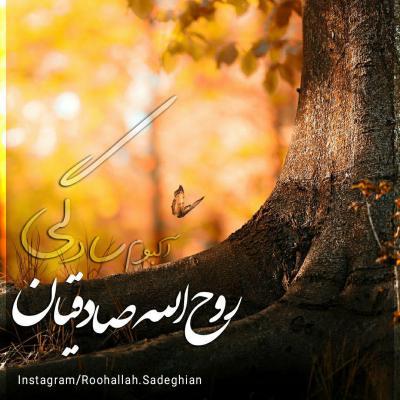 Roohollah Sadeghian - Sadegi