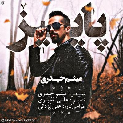Meysam Heydari - Paeez