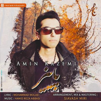 Amin Kazemi - Paeiz