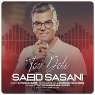 سعید ساسانی - تو دلی