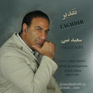 سعید نبی - تقدیر