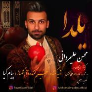 محسن علیمردانی - یلدا