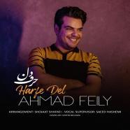 احمد فیلی - حرف دل