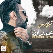 محمد یاوری - شیر علی مردون