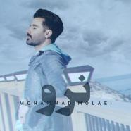 محمد مولایی - نرو
