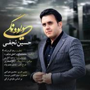 حسین نجفی - دیوونگی